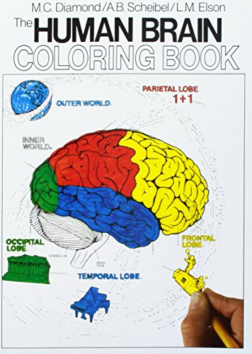 Full Color Science Games (The Human Brain Coloring Book (Coloring Concepts Series))