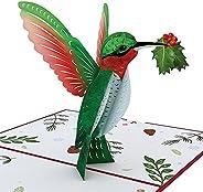 Lovepop Holiday Hummingbird Pop Up Card, 5x7 - 3D Greeting Card, Pop Up Christmas Cards, Kids Christmas Card,