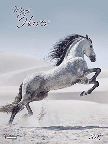 Magic Horses 2017: Kalender 2017 (Decor Calendars 45x60)