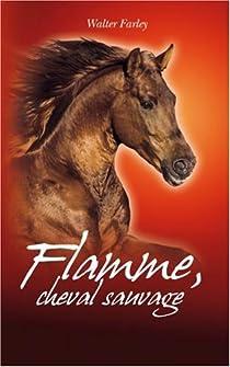 Flamme, cheval sauvage par Farley