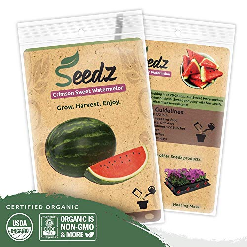 Organic Watermelon Seeds (APPR. 75) Crimson Sweet Watermelon - Heirloom Vegetable Seeds - Certified Organic, Non-GMO, Non Hybrid - USA (Non Fruit Sweet)