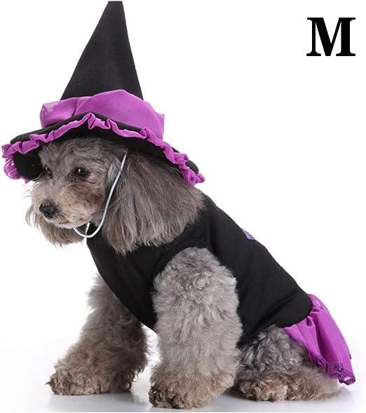 Gato Perro Disfraz De Halloween, Capa De Mago con Gorro Traje De ...