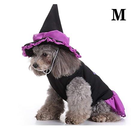 Gato Perro Disfraz De Halloween, Capa De Mago con Gorro ...