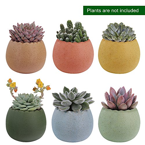 - 6 Pcs 2.75 Inches Ceramic Pots, Colorful Cute Egg Shell Mini Ceramic Succulent Bonsai Pots with a Hole Cute Gifts - Pack of 6