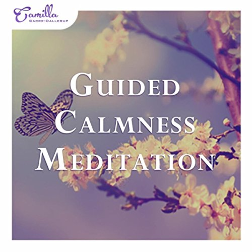guided meditation music free download