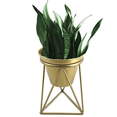 Plant Urns Planter Pot Indoor Geometric Metal Stand Balcony Tabletop Succulent Pot Bonsai Decorative Home Garden Kitchen Modern Plant Holder for Cactus Flower Plant (M)