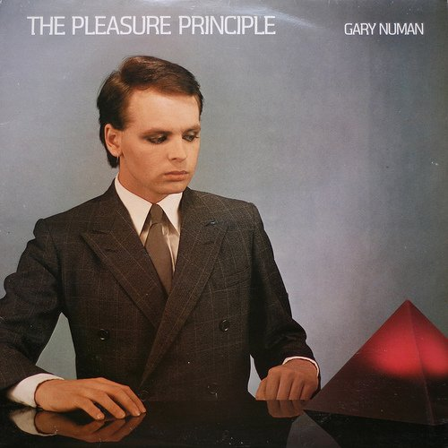 Pleasure Principle [12 inch Analog]                                                                                                                                                                                                                                                    <span class=