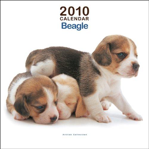 Beagles Mini 2010 Mini Wall - Calendar 2010 Beagle