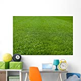 Green Grass Soccer Field Wall Mural by Wallmonkeys Peel and Stick Graphic (72 in W x 47 in H) WM172270
