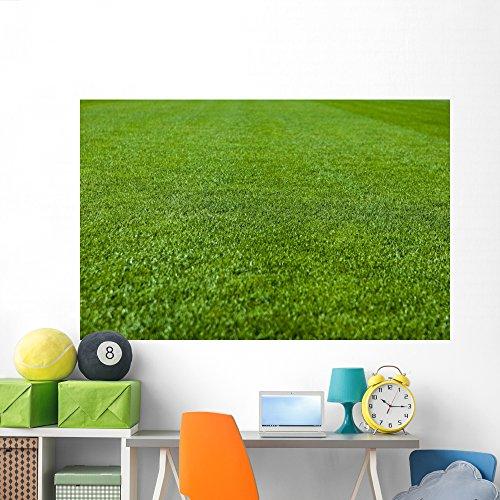 Green Grass Soccer Field Wall Mural by Wallmonkeys Peel and Stick Graphic (72 in W x 47 in H) WM172270 by Wallmonkeys