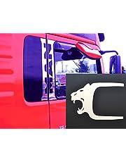 6x gepolijste roestvrijstalen deurraamdecoraties + deurklink Leeuwenhoezen voor TGA TGX-vrachtwagens