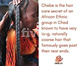 Best Growth Oil For Africa Hairs - Chebe CASTOR Oil - 4 ounces Review