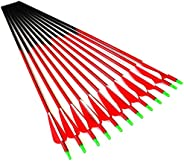 """12pc ID 6.2mm .244"""" Custom Length 22-30 Inch Carbon Arrows Spine 700 Target Practice & Hunting Arrow"""