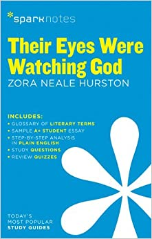 Their eyes were watching god analysis essay