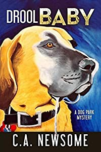 Drool Baby: A Dog Park Mystery (Lia Anderson Dog Park Mysteries) by C. A. Newsome (2015-07-27)