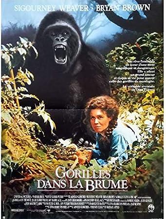 LE LA BRUME FILM TÉLÉCHARGER GORILLE DANS