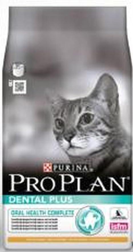 Pro PLAN Dental Plus - Comida para gato (3 kg): Amazon.es: Productos para mascotas