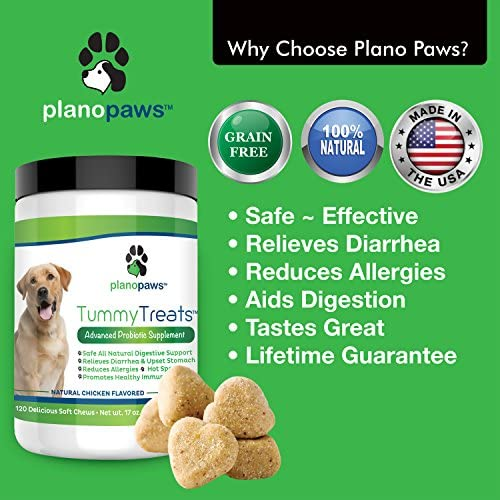 Tummy Treats – Probiotics for Dogs – Safe All Natural Dog Allergy Medicine – Dog Breath Treats – Helps Hot Spots – Yeast Infection – Constipation – Diarrhea – 120 Count – Probiotic Digestive Enzymes