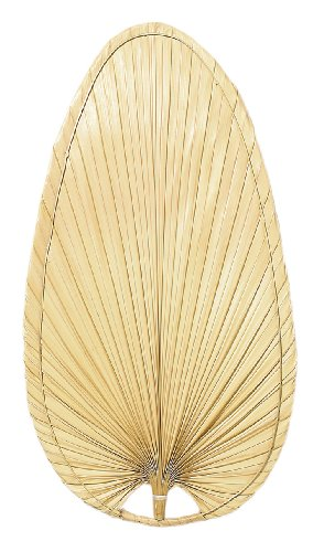 Natural Blades Fanimation Palm Leaf (Fanimation ISP4 Narrow Oval Blade, 22-Inch, Palm, Set of 5)