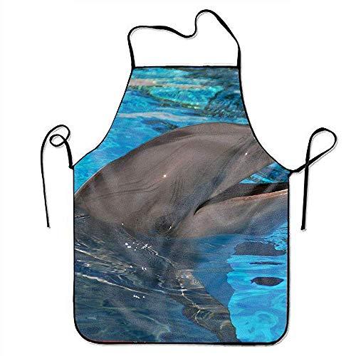 gaeberp Water Resistant Bib Apron Aprons Cute Dolphin Snap Apron for Men/Women