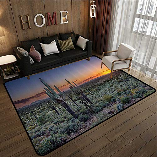 (Printed Carpet,Saguaro Cactus Decor Collection,Sunset Over The Phoenix Valley in Arizona Seen from Silly Mountain State Park Image,Oran 55