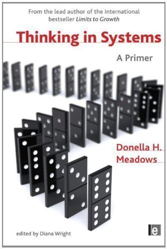 Thinking in Systems: A Primer by Wright, Diana, Meadows, Donella H. 1st (first) Edition (2009)