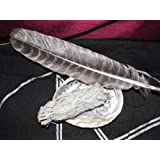 White Sage, Abalone Shell and Feather Smudge Kit