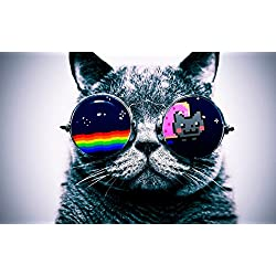Cool Macro Nyan Cat Glasses poster 40 inch x 24 inch / 21 inch x 13 inch