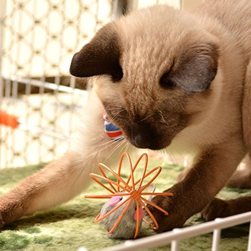 PETFAVORITES™ Catch the Mouse Cat Toy Ball with Feathers for Cats, Bulk Pack.