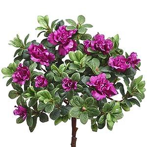 "12"" Silk Azalea Flower Bush -Orchid (Pack of 6) 14"