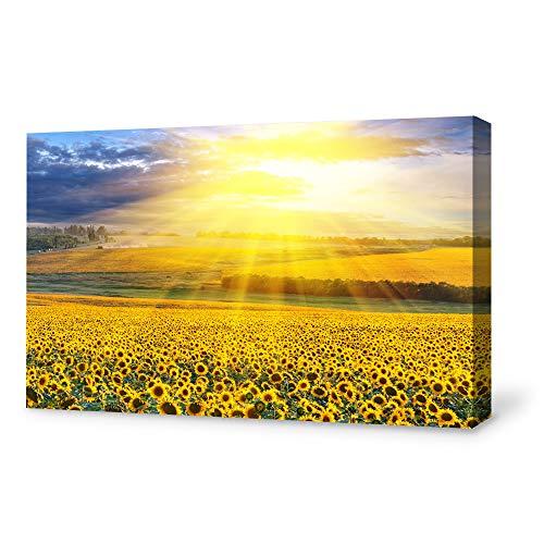 [해외]거실을위한 SIGNFORD 캔버스 벽 예술침실 홈 아트 워크 그림 해바라기 준비 행브 - 16x24 인치 / SIGNFORD Canvas Wall Art for Living RoomBedroom Home Artwork Paintings Sunflower Ready to Hangv - 16x24 inches