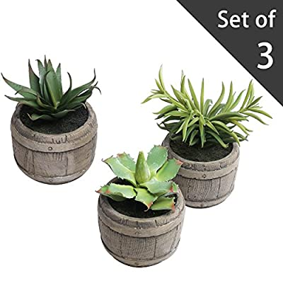 MyGift Assorted Mini Artificial Succulents Plants in Rustic Wood Barrel Design Pots, Set of 3, Brown - A set of 3 assorted artificial succulent plants displayed in decorative wooden barrel pots. Each pot features a rustic style painted finish that resembles the look of vintage wood. Allows you to enjoy the decorative charm of house plants without any mess or maintenance. - living-room-decor, living-room, home-decor - 512%2B3smZAoL. SS400  -