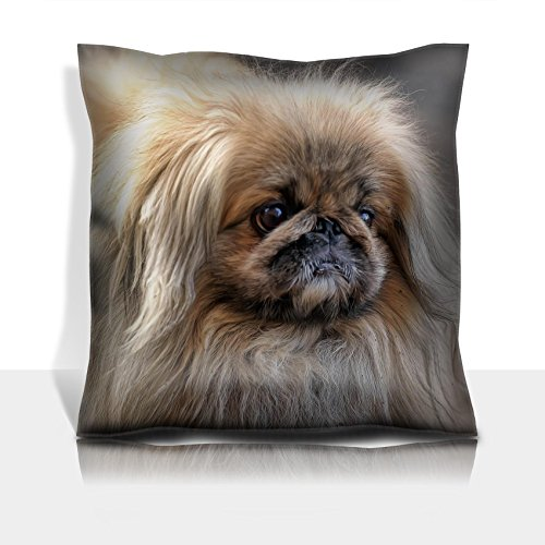 Pekingese Pillow - Luxlady Throw Pillowcase Polyester Satin Comfortable Decorative Soft Pillow Covers Protector sofa 16x16, 1 pack Pekingese dog with its tongue hanging out IMAGE ID 27590784
