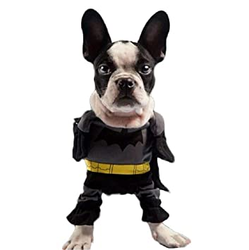 Inception Pro Infinite Traje de Batman - Hombre Murciélago ...
