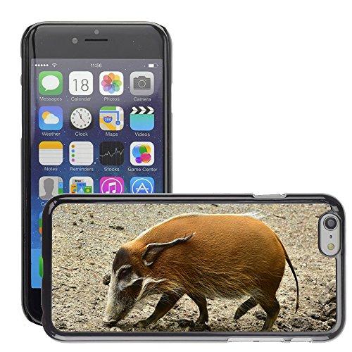 """Bild Hart Handy Schwarz Schutz Case Cover Schale Etui // M00133712 Pinselohrschwein Search Nahrungsmittel // Apple iPhone 6 PLUS 5.5"""""""