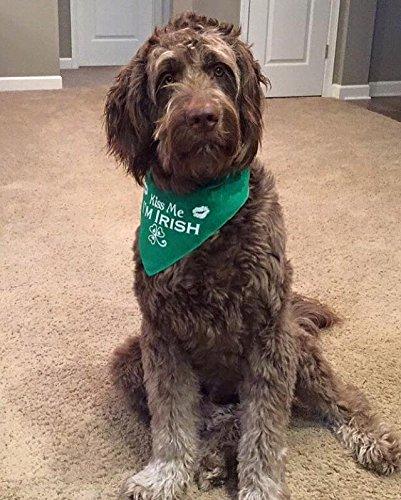 Image of Kiss Me! I'm IRISH Dog Bandana (One Size Fits Most for Medium to Large Dogs)