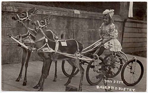 real-photo-postcard-girl-on-four-wheeled-bicycle-cart-pulled-by-two-deer107633