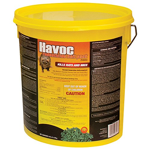 Easy and safe to set - havoc rat bait poison