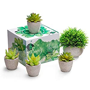 Artificial Succulent Plants Potted - Fake Succulents - Set of 5 - Faux Plants 86