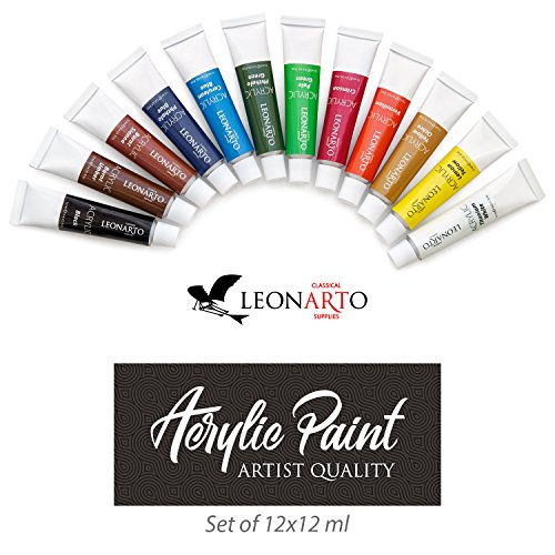 Acrylic paint set 12 x 12ml painting on canvas wood for Fast drying paint for crafts