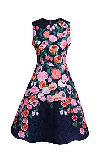Cassie Mclean Womens Rose Floral Retro 1951s Print Fit and Flare Dress