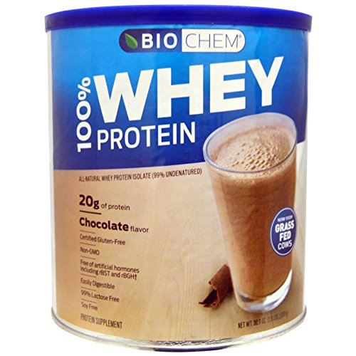 Biochem Sports Whey Protein Isolate Powder Chocolate -- 1.9