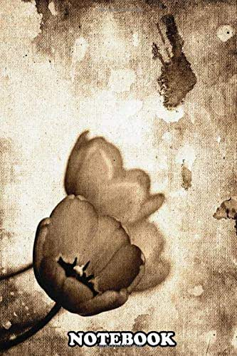Notebook: Photo Edition From Colors To Bl Vintage Flowers Sepia , Journal for Writing, College Ruled Size 6