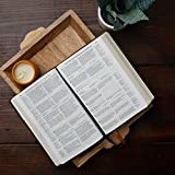 NABRE, New American Bible, Revised