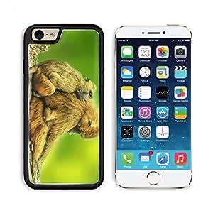 Baboons Brown Couple Day Daytime Guinea Laying Ledge Mammals 3DCom iPhone 6 Cover Premium Aluminium Design TPU Case Open Ports Customized Made to Order wangjiang maoyi
