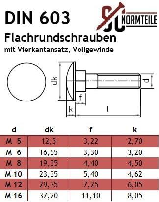 V2A 5 St/ück - M6x60 - Edelstahl A2 DIN 603 // DIN 6923 mit Sperrverzahnung - Vollgewinde Flachrundschrauben//Schlossschrauben mit Flanschmuttern - SC603 // SC6923