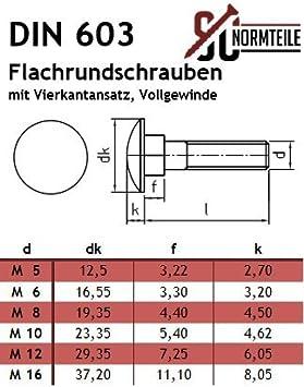 SC-Normteile M10x130 - SC603 Vollgewinde 10 St/ück Flachrundschrauben//Schlossschrauben mit Vierkantansatz - DIN 603 Edelstahl A2 V2A