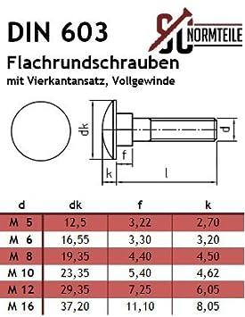 DIN 603 Vollgewinde // Schlo/ßschrauben SC603 SC-Normteile 10 St/ück Flachrundschrauben M5 x 50 mm mit Vierkantansatz aus rostfreiem Edelstahl A2 V2A