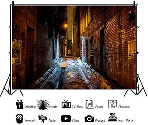 10x12 FT Backdrop Photographers,Retro Fashion Women Shopping in City Streets Beauty Butterfly Urban Life Graphic Background for Kid Baby Artistic Portrait Photo Shoot Studio Props Video Drape