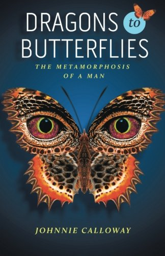 Download Dragons to Butterflies PDF